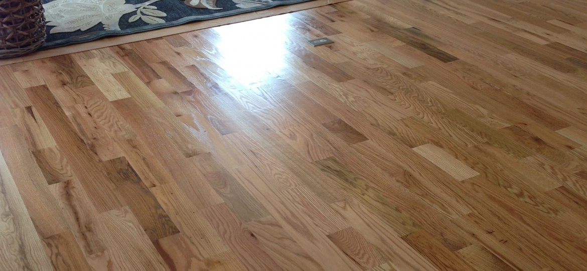 Oak Hardwood floor finished