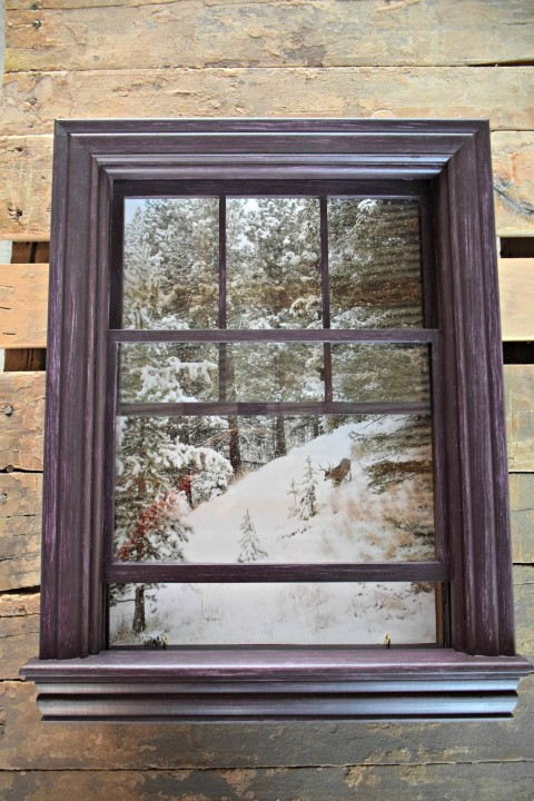 jennys window